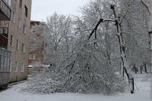 Через мокрий сніг 19 населених пунктів сидять без світла