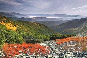 Чому варто відвідати осінні Карпати (Фото)