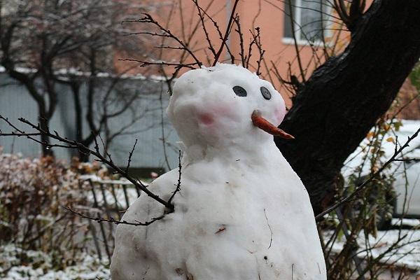 В Тернопіль прийшла зима і сніговики (Фото)
