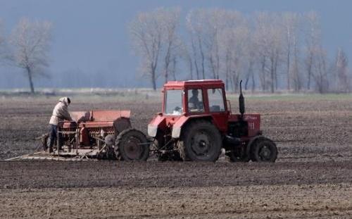 На Тернопільщині банки готові компенсувати 45% посівної