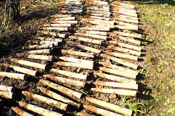 На Кременеччині знайшли цілий склад боєприпасів