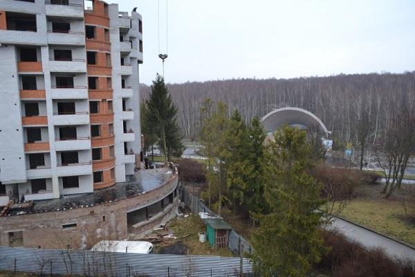 Поблизу будівництва в тернопільському парку почали вирубувати сосни