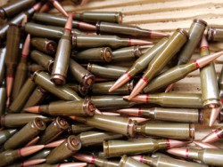 Зброю, набої та тротил вилучили правоохоронці у мешканців Тернопільщини